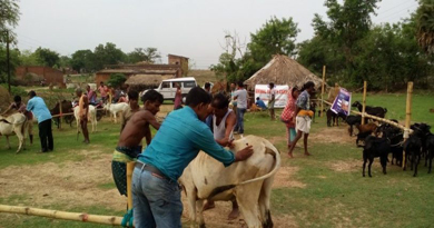 GKEL-organizes-animal-health-camp