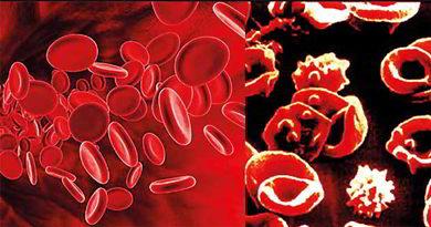 world-Thalassemia