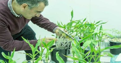 Mosaic India and the S M Sehgal Foundation honour research in plant nutrition