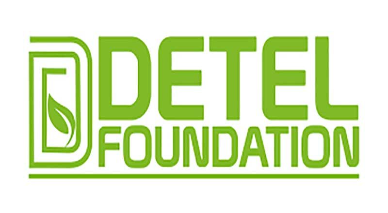 detel-foundation