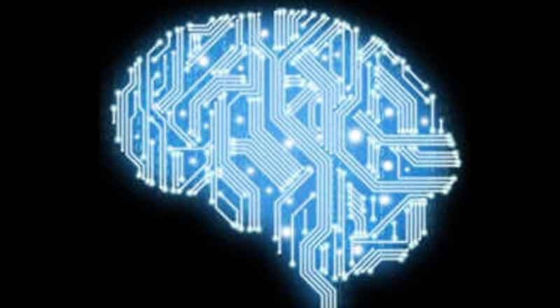 digital-nervous-system