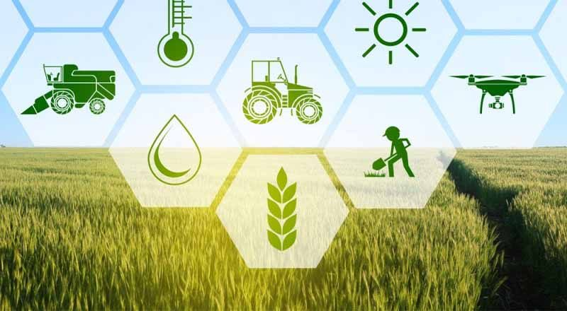 agriculture-sector